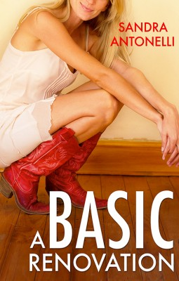 A Basic Renovation by Sandra Antonelli from Escape Publishing in Romance category