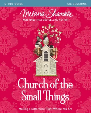 Church of the Small Things Study Guide by Melanie Shankle from HarperCollins Christian Publishing in Religion category