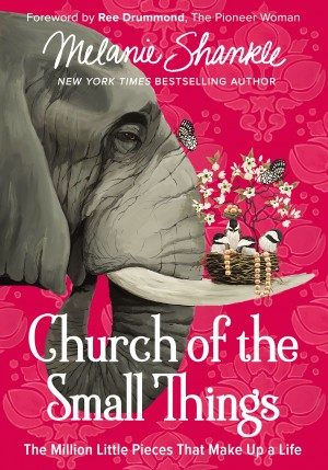 Church of the Small Things by Melanie Shankle from HarperCollins Christian Publishing in Religion category