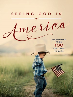 Seeing God in America by Thomas Nelson from HarperCollins Christian Publishing in Religion category