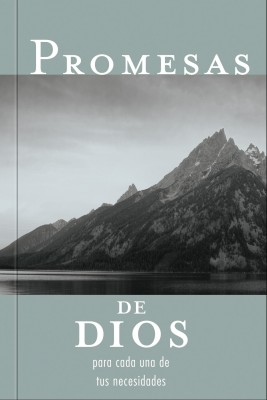 Promesas de Dios by Jack Countryman from HarperCollins Christian Publishing in Religion category