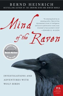 Mind of the Raven by Bernd Heinrich from HarperCollins Publishers LLC (US) in Science category