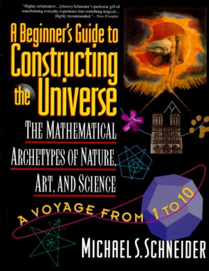 A Beginner's Guide to Constructing the Universe by Michael S. Schneider from HarperCollins Publishers LLC (US) in Science category