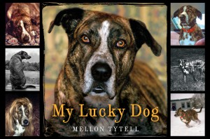 My Lucky Dog by Mellon Tytell from HarperCollins Publishers LLC (US) in Pet category