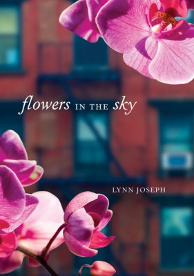 Flowers in the Sky by Lynn Joseph from  in  category