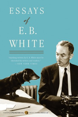 Essays of E. B. White by E. B. White from HarperCollins Publishers LLC (US) in Language & Dictionary category