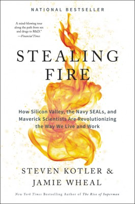 Stealing Fire by Jamie Wheal from HarperCollins Publishers LLC (US) in Science category