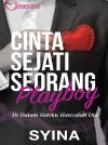 Cinta Sejati Seorang Playboy