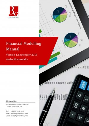 Financial Modelling Manual: A comprehensive but succinct step-by-step guide to building a financial forecast model in Excel by Aasha Shamsuddin from Mint Associates Ltd in Accounting & Statistics category