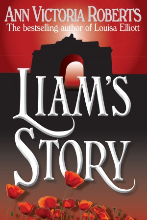 Liam's Story by Ann Victoria Roberts from Mint Associates Ltd in Teen Novel category
