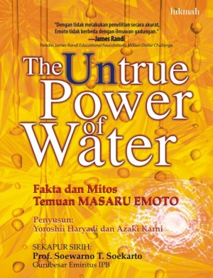 The Untrue Power of Water by Yoroshii Haryadi, Azaki Karni from Mizan Publika, PT in General Novel category