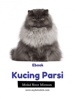 Kucing Parsi by Mohd Noor bin Miswa from  in  category