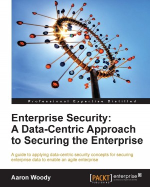 Enterprise Security: A Data-Centric Approach to Securing the Enterprise by Aaron Woody from Packt Publishing in Engineering & IT category