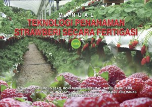MANUAL TEKNOLOGI PENANAMAN STRAWBERI FERTIGASI