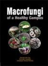 Macrofungi of a Healty Campus