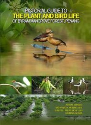 Pictorial Guide To The Plant and Bird Life of Byram Mangrove Forest, Penang by Asyraf Mansor, Mohd Abdul Muin Md. Akil, Shahrul Anuar Mohd Sah, Rahmad Zakaria from PENERBIT UNIVERSITI SAINS MALAYSIA in General Academics category