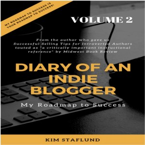 Diary of an Indie Blogger: My Roadmap to Success VOL 2