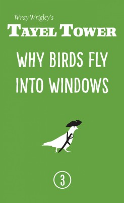 Why Birds Fly Into Windows by Wray Wrigley from PublishDrive Inc in General Novel category