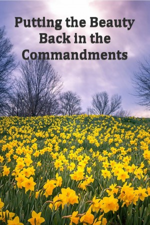 Putting the Beauty Back in the Commandments