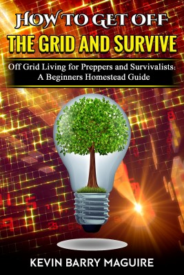 How to Get Off the Grid and Survive by Kevin Barry Maguire from PublishDrive Inc in Language & Dictionary category