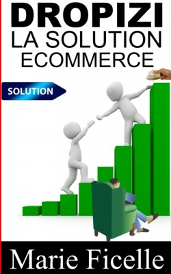 Dropizi : La Solution E-commerce