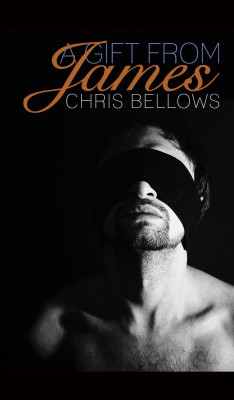 A Gift From James by Chris Bellows from PublishDrive Inc in General Novel category