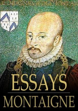 Essays: Volume 19