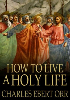 How to Live a Holy Life by xentral methods from Publish Drive (Content 2 Connect Kft.) in Religion category