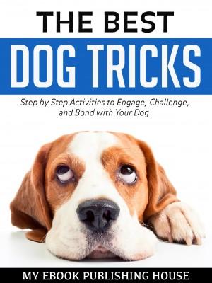 The Best Dog Tricks