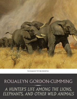 A Hunter's Life among the Lions, Elephants, and Other Wild Animals by Bayard Taylor from PublishDrive Inc in History category