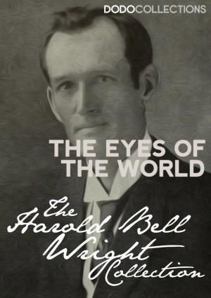 The Eyes of the World by Harold Bell Wright from PublishDrive Inc in General Novel category