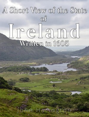A Short View of the State of Ireland, Written in 1605 by John Harington from PublishDrive Inc in History category