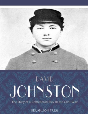 The Story of a Confederate Boy in the Civil War by David Johnston from PublishDrive Inc in History category
