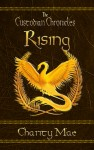 The Custodian Chronicles Rising by Mae Charity from  in  category