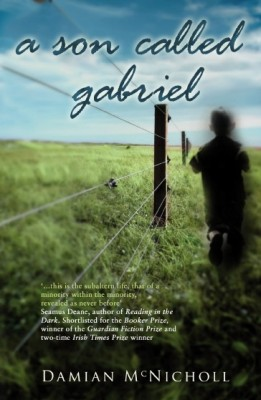 A Son Called Gabriel by Damian McNicholl from PublishDrive Inc in General Novel category