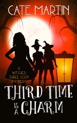 Third Time is a Charm by Cate Martin from PublishDrive Inc in General Novel category