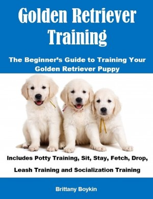 Golden Retriever Training: The Beginner's Guide to Training Your Golden Retriever Puppy