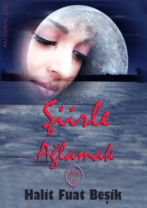 Şiirle Ağlamak by Halit Fuat Be?ik from PublishDrive Inc in Language & Dictionary category