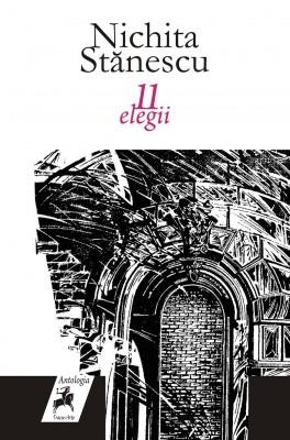 11 elegii by Wan Ruslan Ismail & Zainudin Othman from PublishDrive Inc in Language & Dictionary category