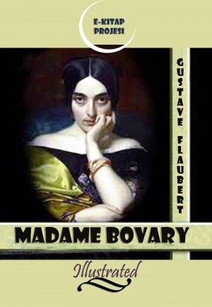 Madame Bovary by Gustave Flaubert from PublishDrive Inc in Classics category