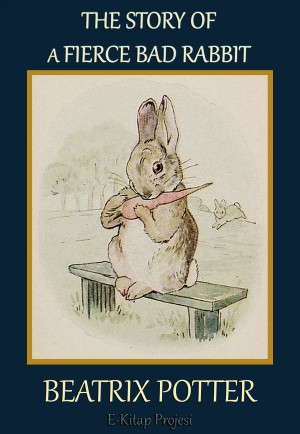 The Story of a Fierce Bad Rabbit by Beatrix Potter from Publish Drive (Content 2 Connect Kft.) in Teen Novel category