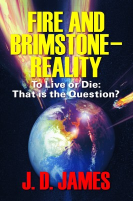 Fire and Brimstone - Reality - To Live or Die: That is the Question? by John Daly from Strategic Book Publishing & Rights Agency in Religion category