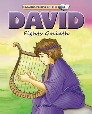 David Fights Goliath by Melissa Jensen from Strategic Book Publishing & Rights Agency in Religion category