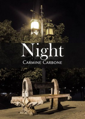 Night by Carmine Carbone from StreetLib SRL in General Novel category
