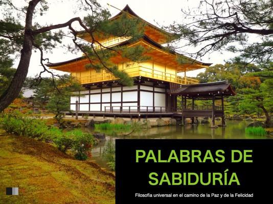 Palabras de Sabiduría : Filosofía universal en el camino de la paz y de la felicidad by colectivo from StreetLib SRL in Art & Graphics category