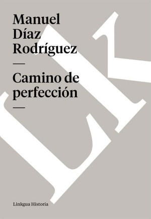 Camino de perfección by Manuel Díaz Rodríguez from  in  category