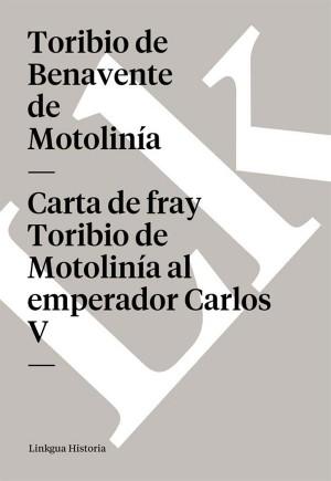 Carta de fray Toribio de Motolinía al emperador Carlos V by Toribio de Benavente de Motolinía from StreetLib SRL in History category