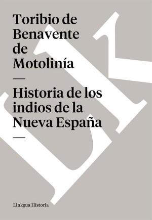 Historia de los indios de la Nueva España by Toribio de Benavente de Motolinía from StreetLib SRL in History category