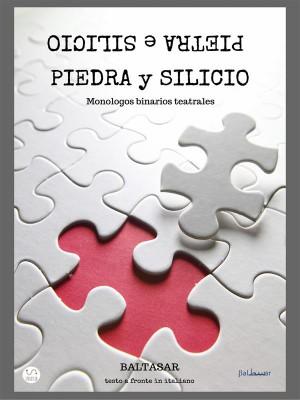 piedra y silicio (pietra e silicio, testo a fronte in italiano )