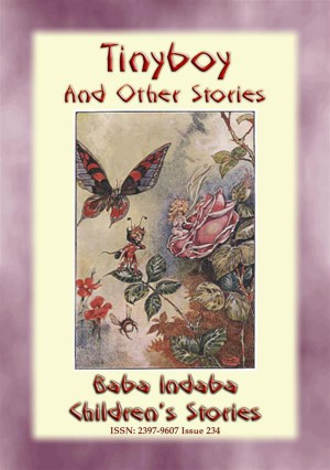 TINYBOY AND OTHER STORIES – Children's Fairy Adventures at the Bottom of the Garden by Anon E. Mouse from StreetLib SRL in General Novel category